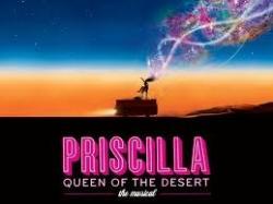 il_musical_priscilla_arriva_in_italia_a_giugno_le_audizioni