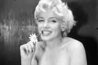 All'asta porno di Marilyn.Vero o falso?