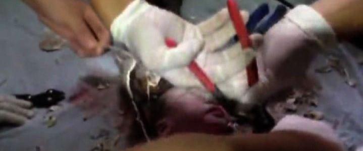 Cina: neonato gettato nel wc, salvato da pompieri