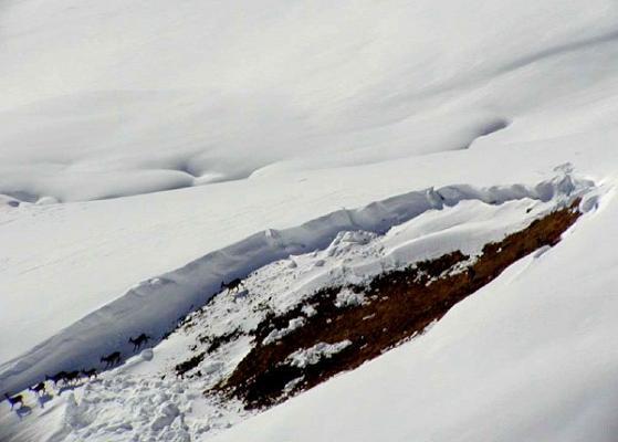 Montagna, la Forestale lancia l'allarme per il rischio valanghe