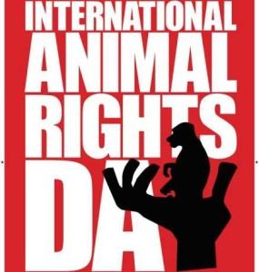animali diritti