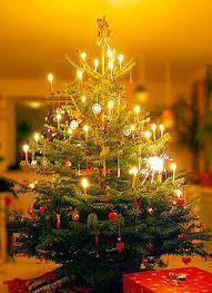 Allergie, potrebbe anche essere colpa dell'albero di Natale
