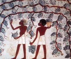 'Il vino nell'Antico Egitto. Il passato nel bicchiere'