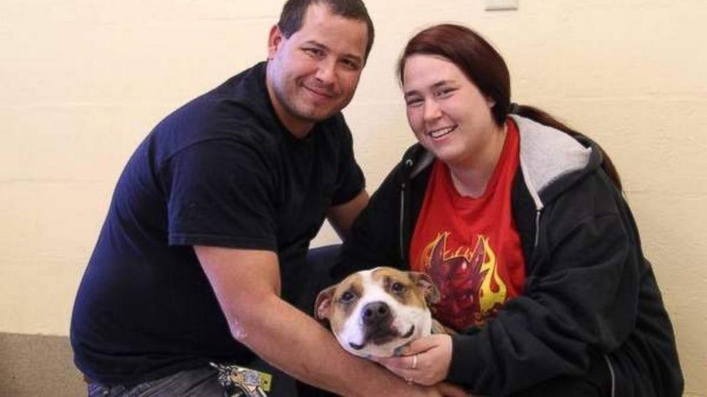 Perso il cane nell'Uragano Sandy, lo ritrovano dopo 18 mesi