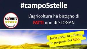 Campo5stelle_invio-1