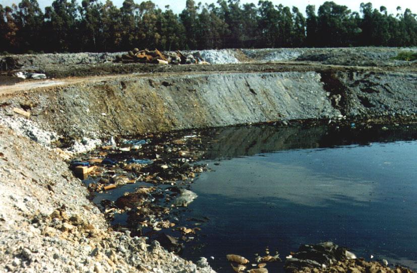Criminalità ambientale: tutti i reati dell'ultimo anno