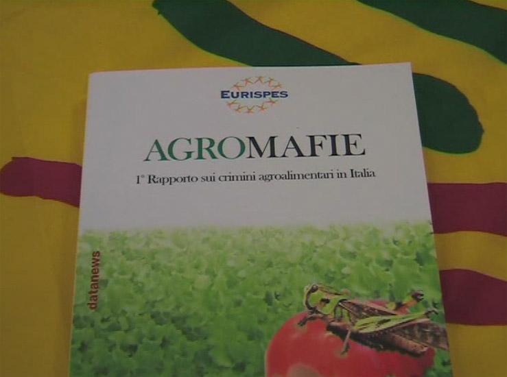 Contraffazioni, Made in Italy in pericolo