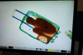 bambino-nella-valigia