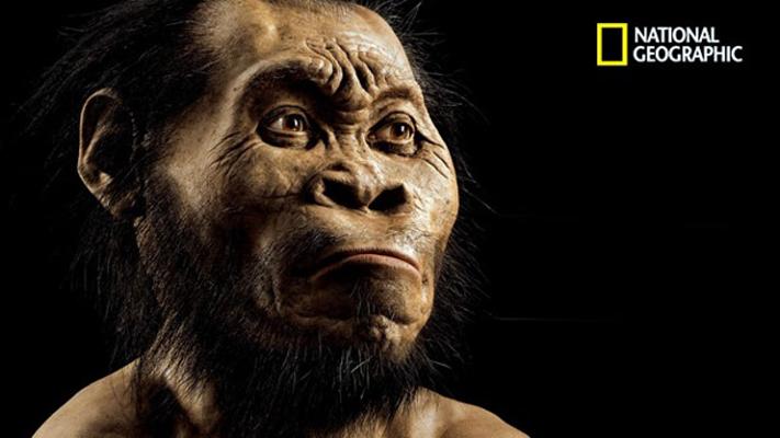 Homo naledi può riscrivere la storia dell'umanità