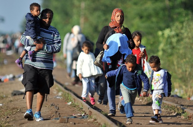 Croazia apre ai migranti, incidenti al confine Serbia-Ungheria