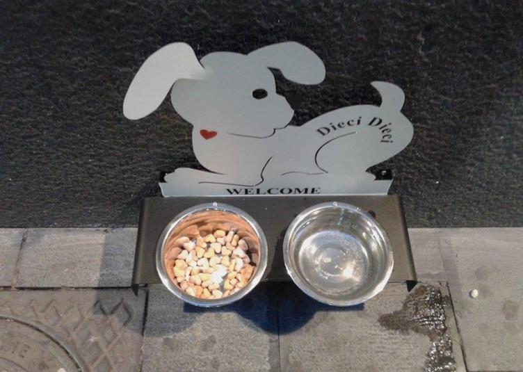 bar per cani a Napoli.8-3