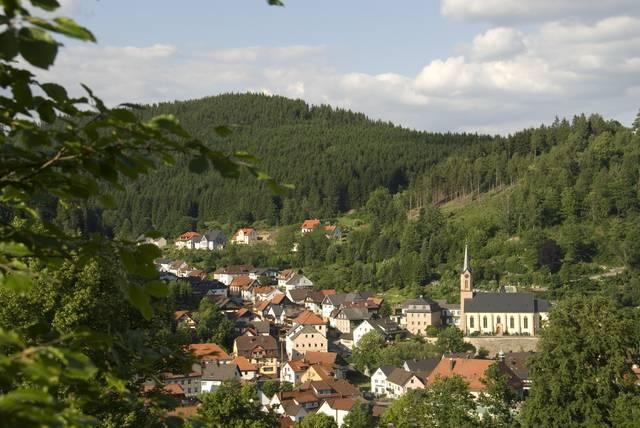 Orrore in Baviera, scoperti i corpi di 8 neonati