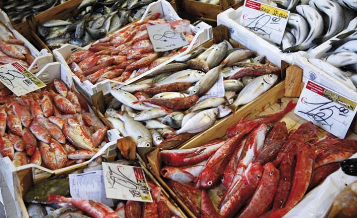Europa: guerra alle false etichette del pesce