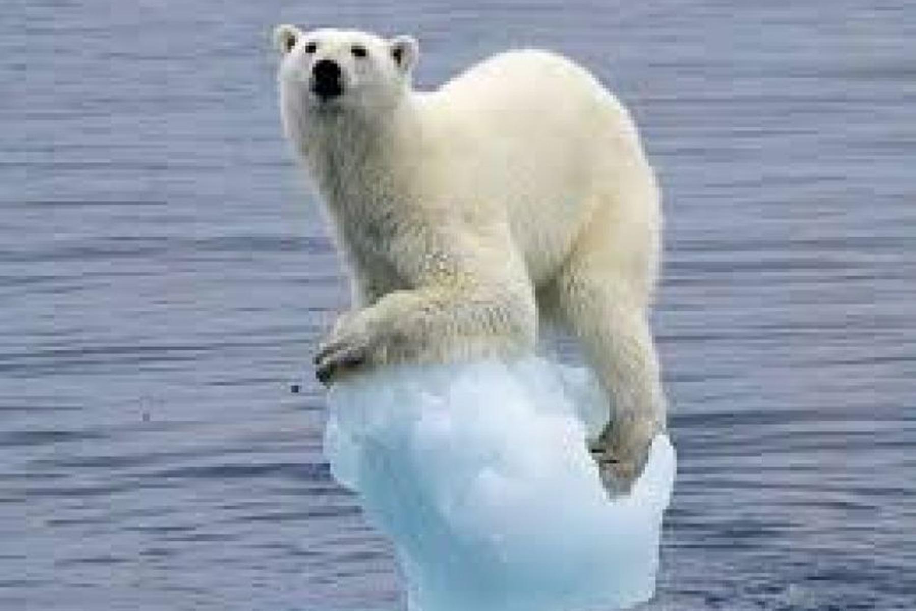 Il ghiaccio del Polo Nord ha le ore contate?