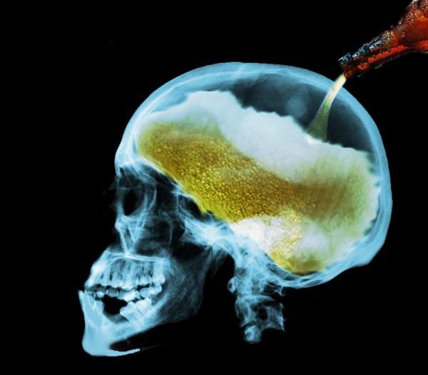 La voglia di alcol parte dal cervello