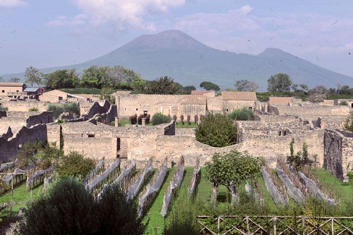 A Pompei vendemmia tra le rovine