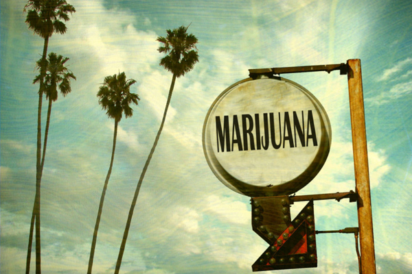 Cannabis: sì all'uso ricreativo in Usa