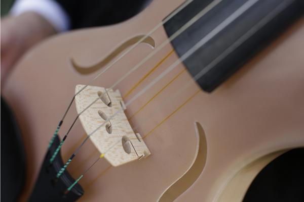 Un italiano crea violino fatto di seta di ragno