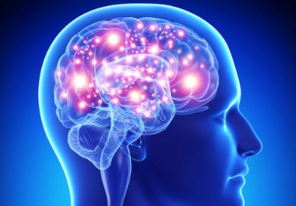 Alzheimer. Niente fondi, centro per la ricerca a rischio chiusura