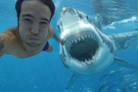 selfie-pericolosi