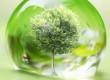giornata-mondiale-ambiente-2017