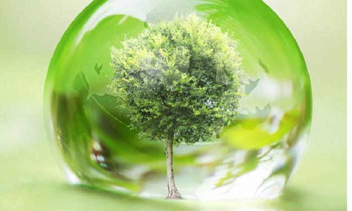 #worldenvironmentday: oggi celebriamo la natura