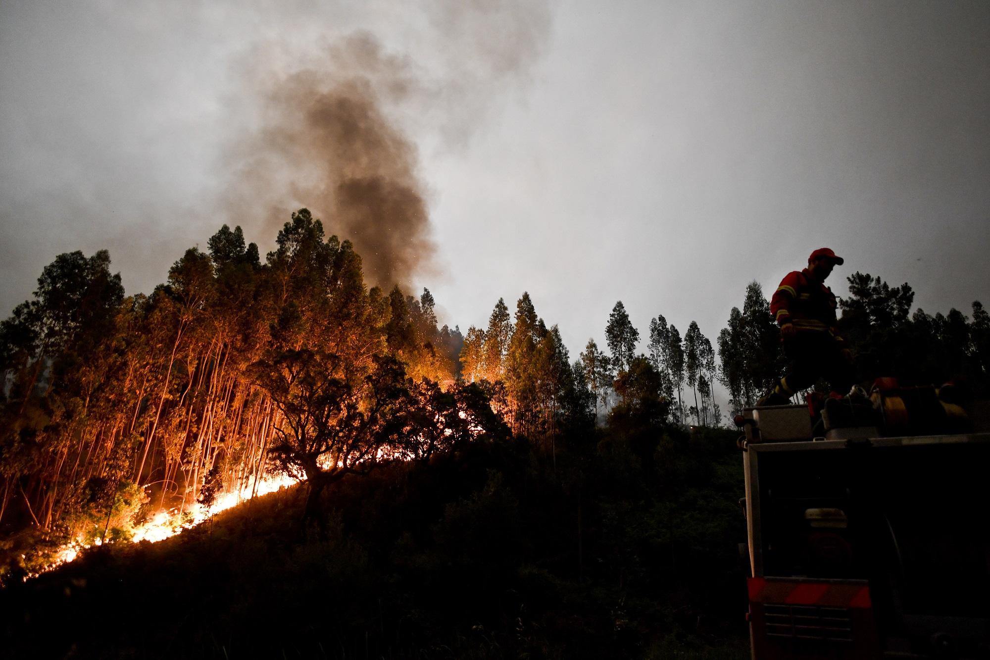 Incendio in Portogallo: decisi tre giorni di lutto nazionale