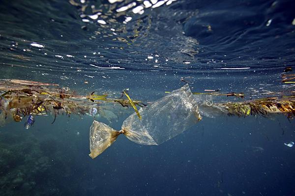 Ciao, ciao mare: quello italiano è inquinato