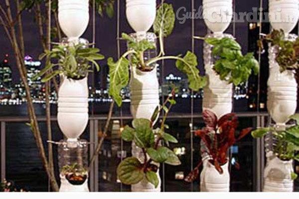 Giardino idroponico, l'orto del futuro