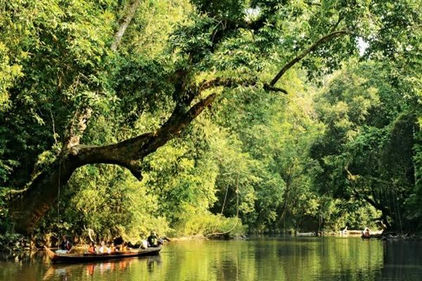 Piantiamo un albero in Nepal: iniziativa di Treedom.net