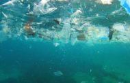 Pescatori 'spazzini', per un mare più pulito