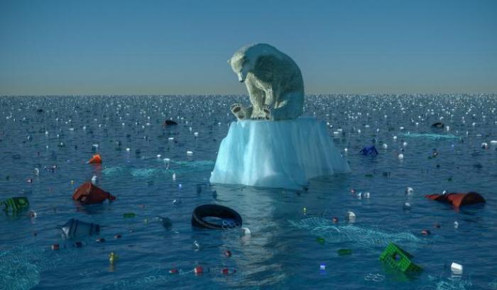 A causa dell'uomo un milione di specie a rischio estinzione