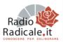 Busta con proiettile per il ministro dell'Interno Salvini