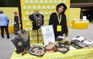 Economia circolare: da kiwi scartati ottimo aceto antinfiammatorio