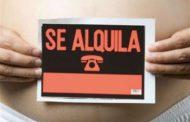 Los vientres de alquiler: No Spagna a maternità surrogata