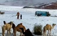 Snow on the Sahara? Nevica in Arabia Saudita