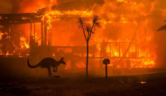 La verità sugli incendi in Australia