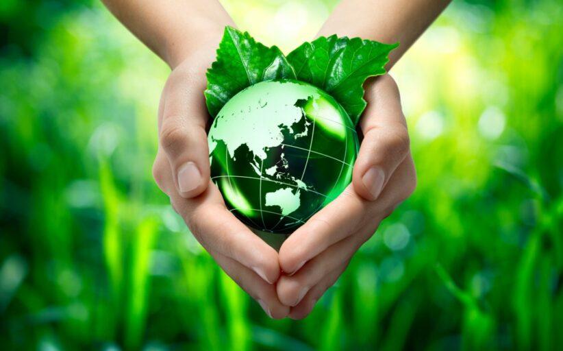 Ripristinare gli ecosistemi guardando al futuro